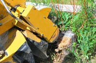 Wrexham tree stump grinding services
